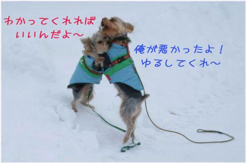 060129-haginosato5.jpg