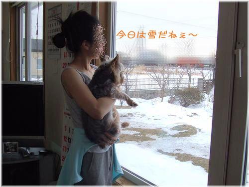 060130-yuki.jpg