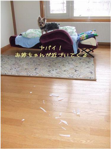 060201-itazura5.jpg