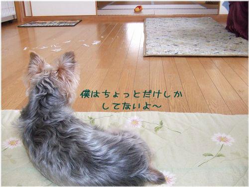 060201-itazura6.jpg
