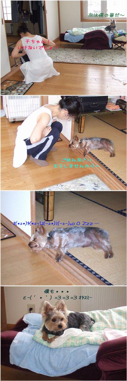 060201-itazura7~11.jpg