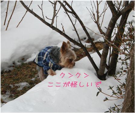 060213-kunkun1.jpg