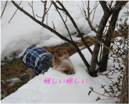 060213-kunkun2.jpg