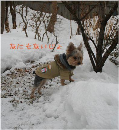 060214-kunkun2.jpg
