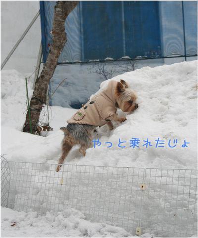 060214-kunkun7.jpg