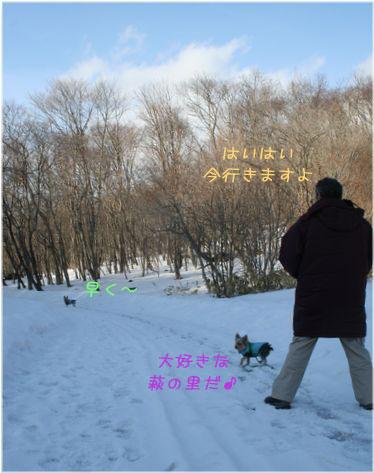 060215-sanpo3.jpg