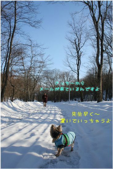 060215-sanpo4.jpg