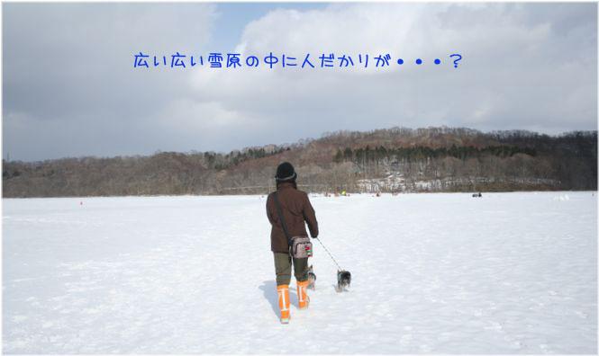 060218-poroto1.jpg