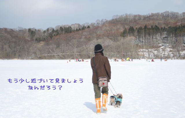 060218-poroto2.jpg