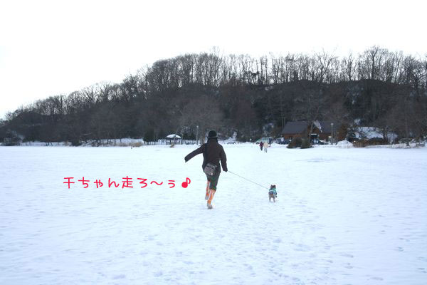 060218-poroto5.jpg