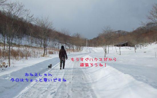 060219-haginosato1.jpg