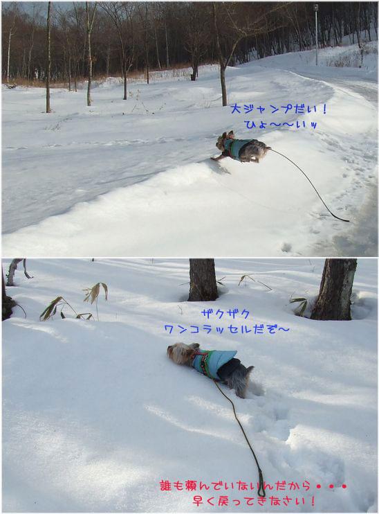 060219-haginosato57.jpg