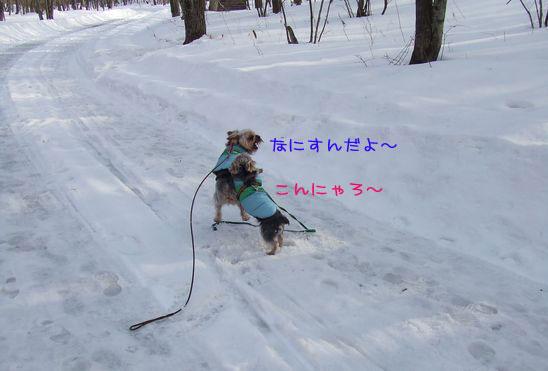 060219-haginosato6.jpg