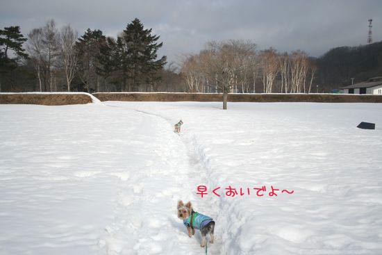 060220-jinya2.jpg