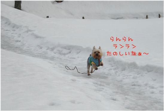 060220-jinya3.jpg