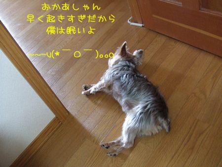 060224-torino9.jpg