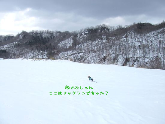 060308-sky1.jpg