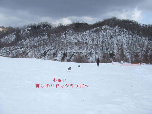 060308-sky2.jpg
