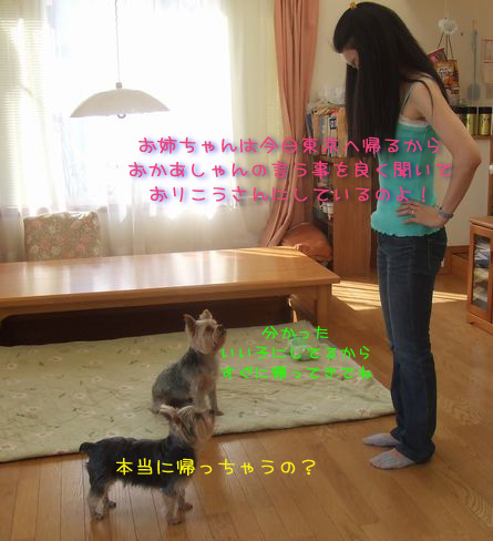060309-yuririnn4.jpg