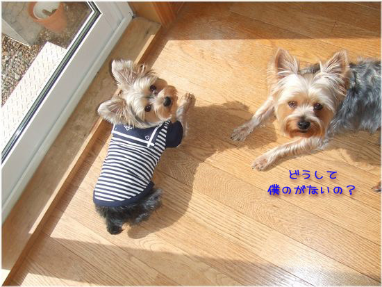 060319-ryou2.jpg