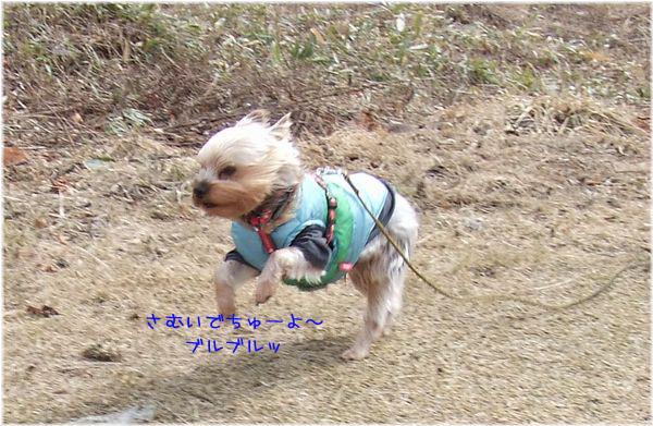 060321-yuki3.jpg