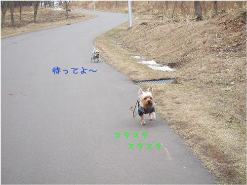060323-haginosato1.jpg