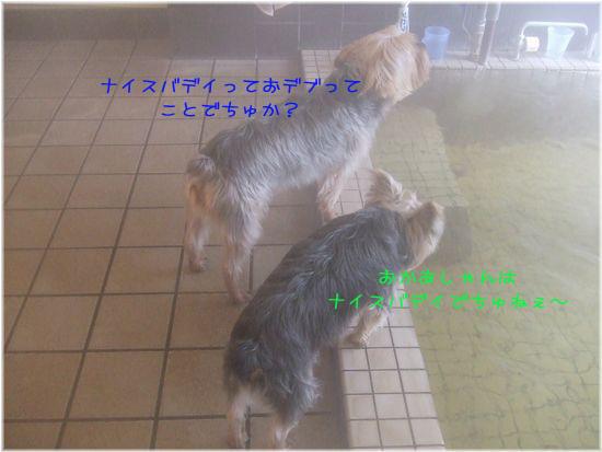 060328-ofuru1.jpg