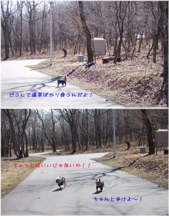 060331-haginosato12.jpg