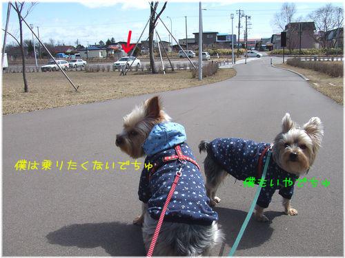 060331-haginosato3.jpg