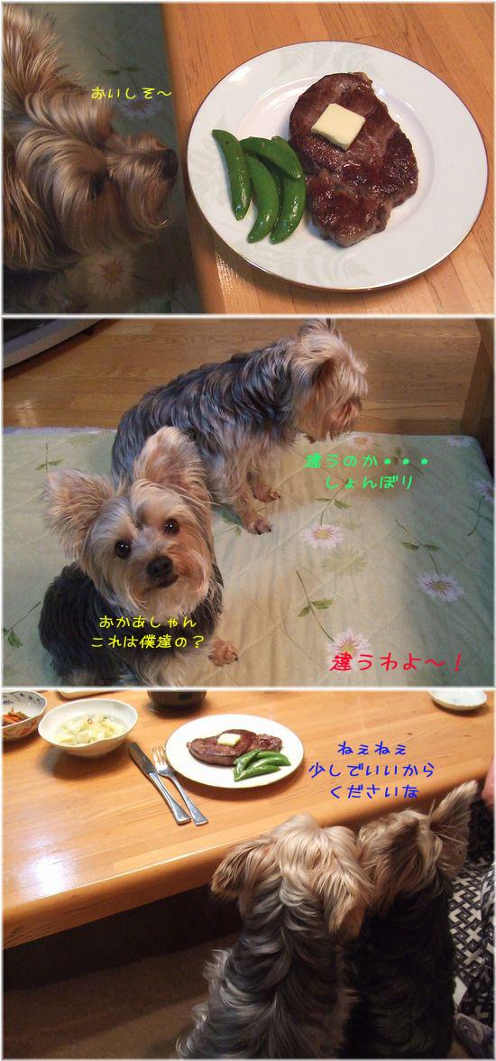 060331-steak123.jpg