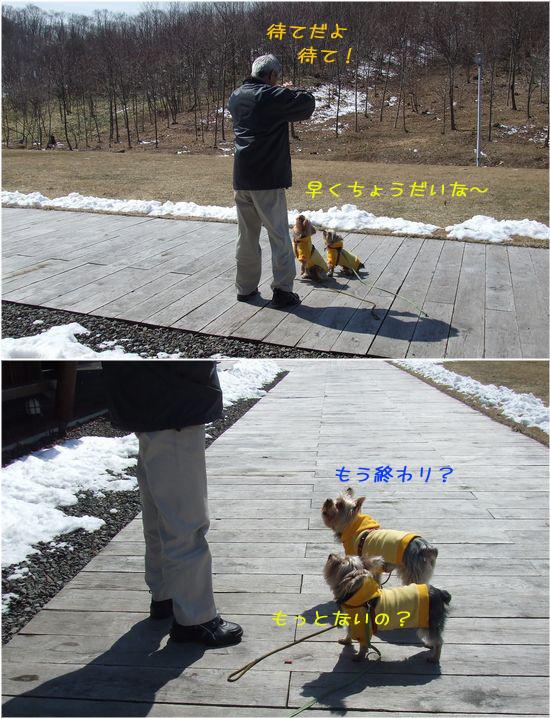 060405-haginosato45.jpg