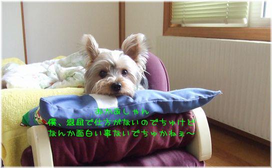 060413-ryou1.jpg