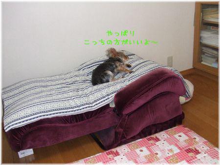 060417-massage4.jpg
