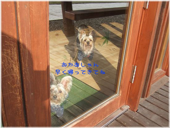 060427-haginosato3.jpg
