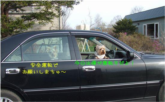 060504-car.jpg
