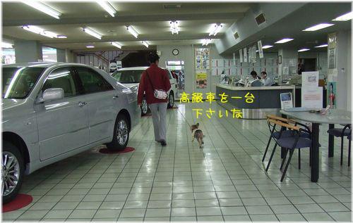 060615-toyota1.jpg