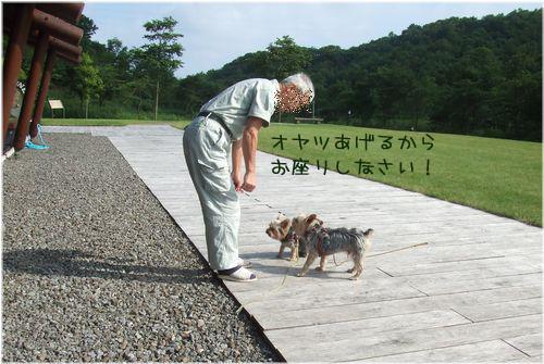 0607130-haginosato4.jpg