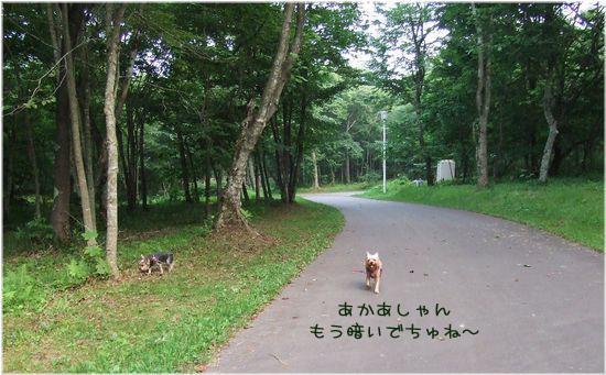 060808-haginosato2.jpg