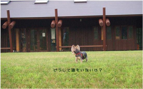060808-haginosato3.jpg