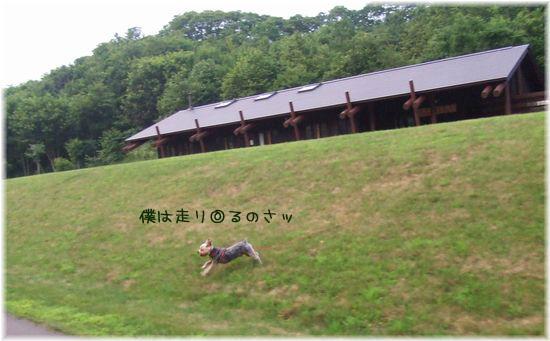 060808-haginosato4.jpg