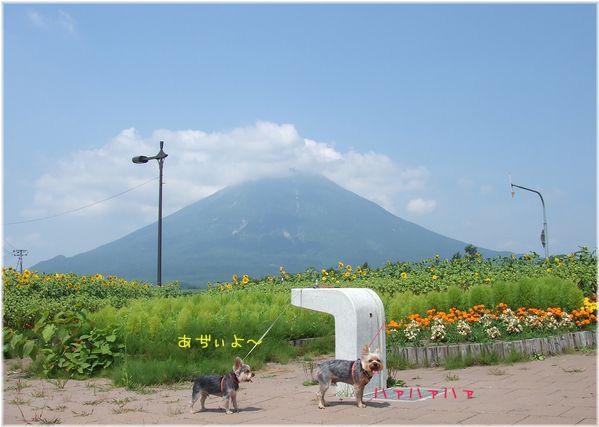 060809-niseko1.jpg
