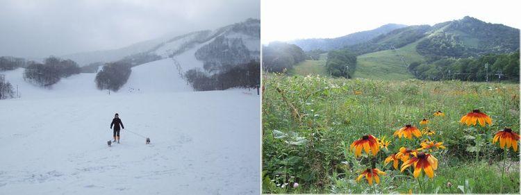 060826-ski67.jpg