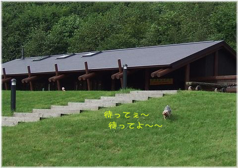 060905-hainosato5.jpg