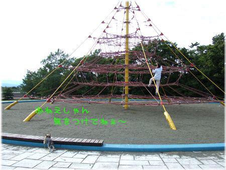 060906-nagamuma5.jpg