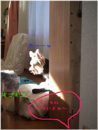 060908-hinata5.jpg
