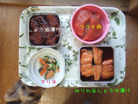 060909-fruit1.jpg