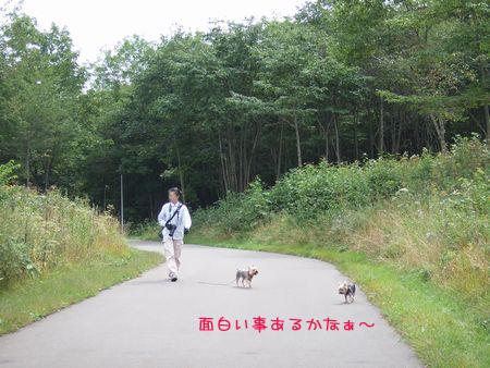 060916-haginosato1.jpg