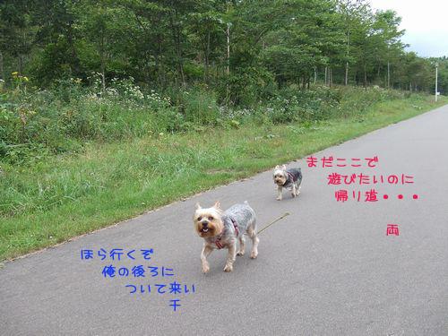 060916-haginosato5.jpg