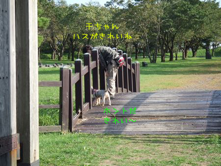 060923-bokujyou11.jpg