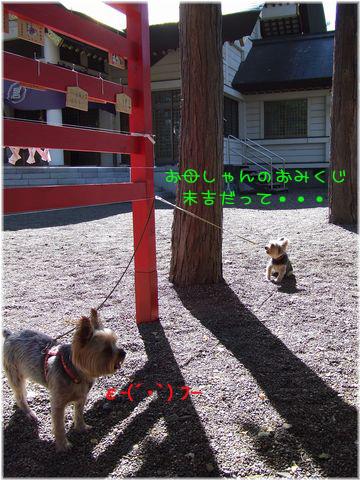 060925-iwamizawa6.jpg